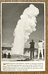 Click to view larger image of World-Famous Old Faithful Geyser (Image1)