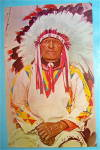 Click to view larger image of Western Indian Chief Postcard (Image1)
