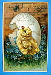 Easter Greeting Postcard with Chick By An Egg