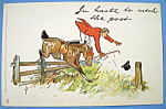 Write Away Postcard By Tuck's w/Man Falling Off Horse