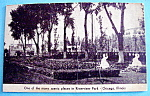 Click here to enlarge image and see more about item 11001: Riverview Park Scenic Place Picture Postcard (Chicago)