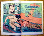 Click to view larger image of Tarzan (Lord Of The Jungle) Comic #245-January 1976 (Image4)