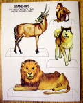 Click to view larger image of Animal World Coloring Book 1977 (Cut Out On Back Cover) (Image2)