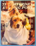 Saturday Evening Post Magazine March 1981 Benji The Dog