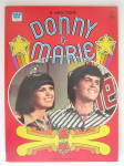 Click here to enlarge image and see more about item 23999: Donny & Marie Whitman Coloring Book 1977