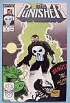 Click here to enlarge image and see more about item 6474: The Punisher Comics - Feb 1988 - Garbage