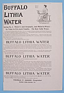 Vintage Ad: 1895 Buffalo Lithia Water (Image1)