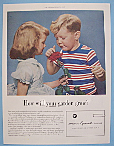 Vintage Ad: 1955 American Cyanamid Company (Image1)
