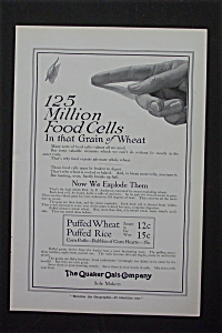 1916 The Quaker Oats Company w/Food Cells in Wheat (Image1)