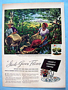 Vintage Ad: 1946 Chase & Sanborn Coffee (Image1)