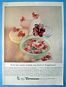 Vintage Ad: 1960 Tupperware (Image1)