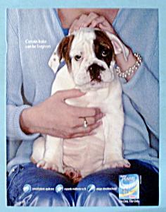 Vintage Ad: 2004 Tampax Pearl Tampons (Image1)