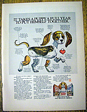 1976 Purina Puppy Chow with A Puppy Paper Doll (Image1)