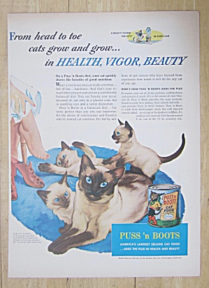 1953 Puss And Boots Cat Food