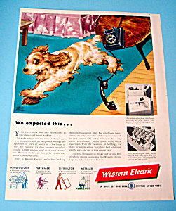 Vintage Ad: 1948 Western Electric