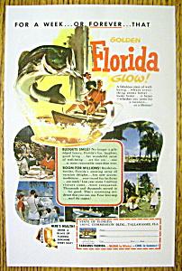 1954 Golden Florida Glow (Image1)