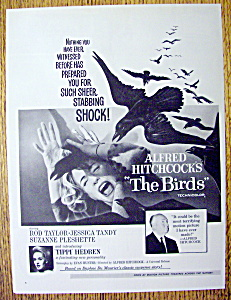 1963 Alfred Hitchcock's The Birds with Woman & Birds (Image1)