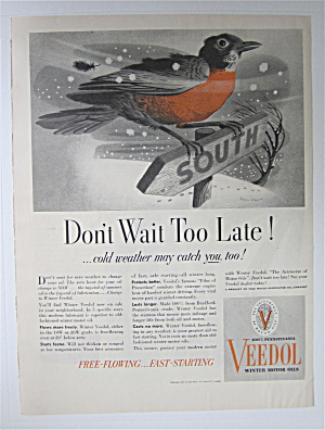 1937 Veedol Motor Oil With Bird On A Sign In The Snow