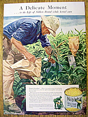 1944 Green Giant Corn