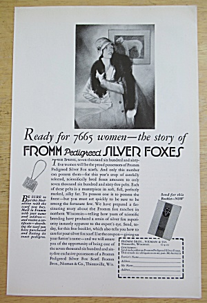 1929 Fromm Pedigreed Fox Scarfs with Silver Fox Scarf (Image1)