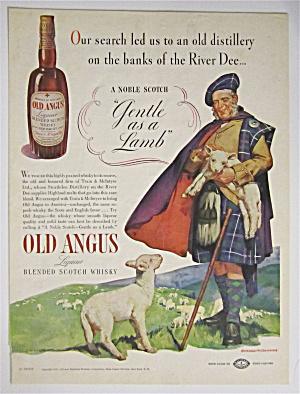 1938 Old Angus Whiskey With Noble Scot And His Lambs