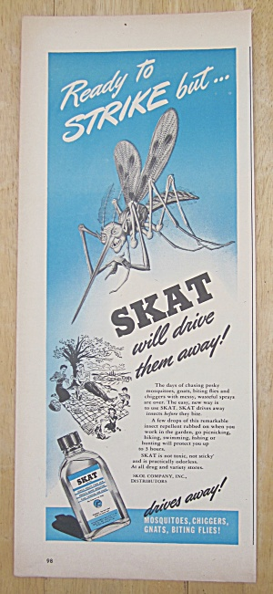 1945 Skat With Bug Looking At People Picnicking