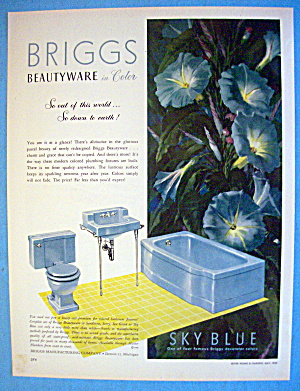 1952 Briggs WIth Sky Blue Beauty Ware (Image1)