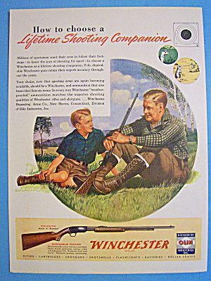 1946 Winchester With Man And Boy Hunting