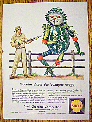 1958 Shell Chemical Corp. With Vegetable Scarecrow