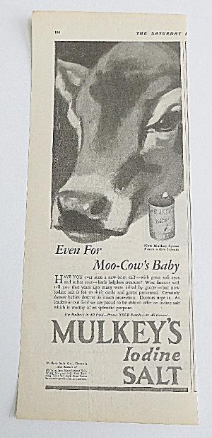 1927 Mulkey's Iodine Salt With Baby Cow (Image1)