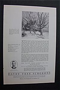 1920 Dual Ad: Davey Tree Expert & Crane Co. (Image1)