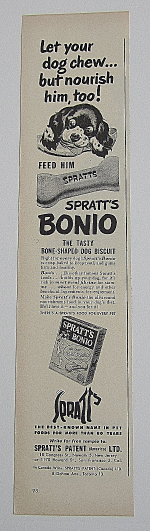 1950 Spratt's Bonio With Puppy Chewing Shoe