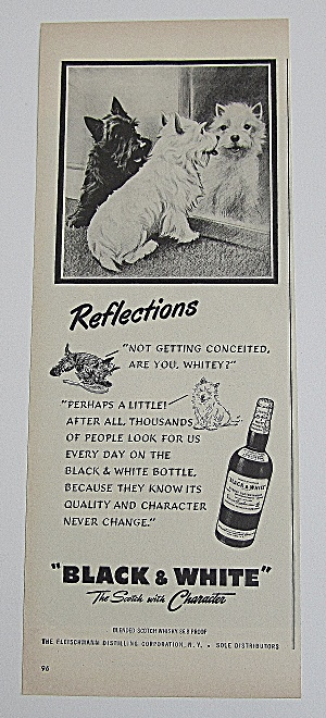 1950 Black & White Whiskey With Black & White Puppies