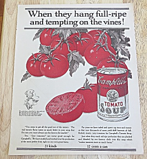 1924 Campbell's Tomato Soup W/ Vine Ripe Tomatoes
