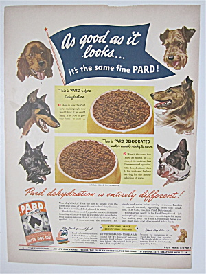 1944 Pard Dehydrated Dog Food W/different Dogs