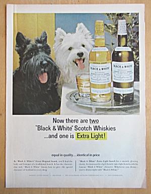 1965 Black and White Whiskey w/ Black & White Scotties (Image1)