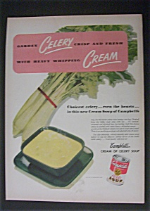 1951 Campbell's Cream Of Celery Soup