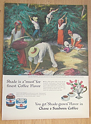 1946 Chase & Sanborn Coffee w/ Coffee Harvest By Smith (Image1)