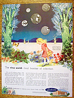 1952 Lederle with Little Girl In Field Of Flowers (Image1)