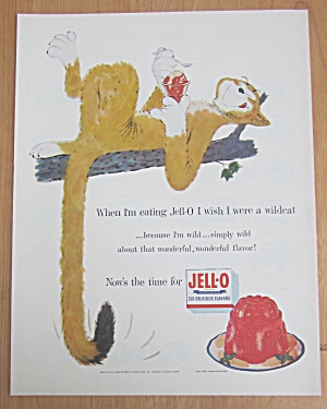 1955 Jell-O Gelatin with Cat in Tree Eating Jell-O (Image1)