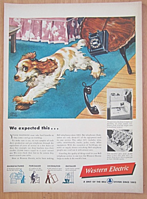1948 Western Electric With Dog Knocking Down Table