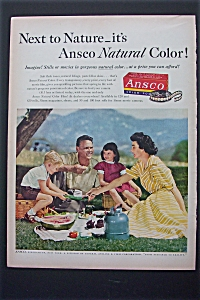 1951 Ansco Film with Family Having A Picnic (Image1)