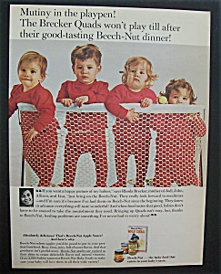 1965 Beech-nut Wheat Cereal W/brecker Quads In Playpen
