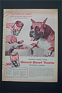 1956 Pard Dog Food with Dog Waiting For His Food (Image1)