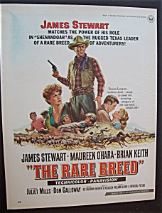 1966 Movie Ad For The Rare Breed
