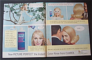 1966  Clairol Picture Perfect Instant Color Rinse (Image1)