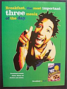 2000  Kellogg's  Raisin  Bran  Crunch  Cereal (Image1)