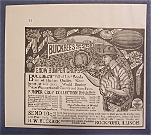 1916  Buckbee's  Seeds (Image1)