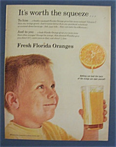 1962 Fresh Florida Oranges
