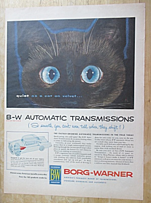 1955 Borg Warner Automatic Transmission w Blue Eyed Cat (Image1)